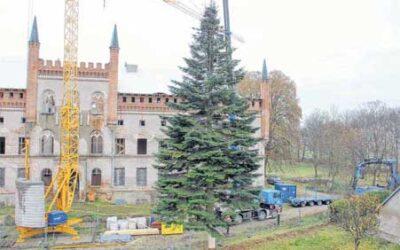 So wurde aus der Schlosstanne ein weihnachtlicher Schwertransport