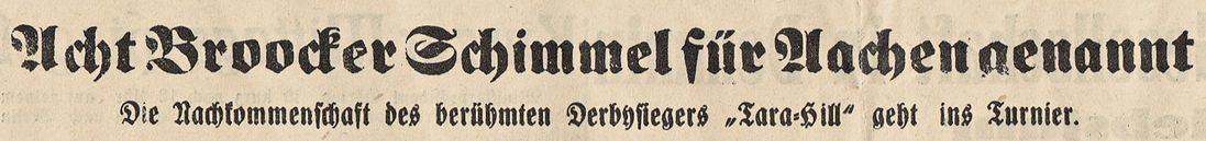 """Abb. 01: Acht Broocker Schimmel für Aachen genannt Die Nachkommenschaft des berühmten Derbysiegers """"Tara-Hill"""" geht ins Turnier."""